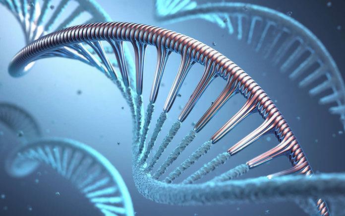 Metody badań genetycznych